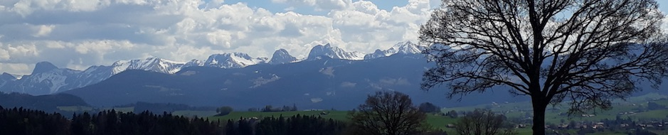 nydegg-04-2017.jpg